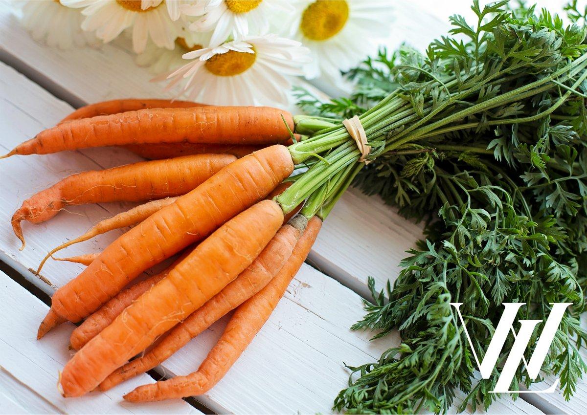 Польза моркови для здоровья