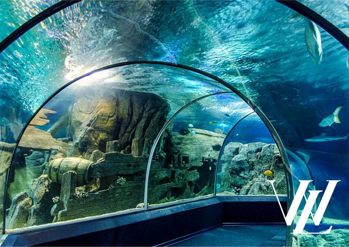 Океанариум и Дельфинарий «Акватория»